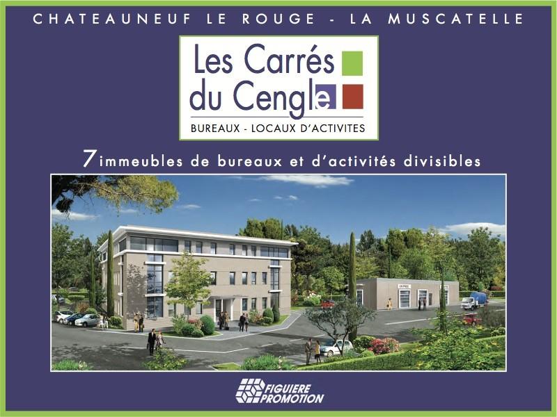 Programme Immobilier Mixte Les Carres Du Cengle A